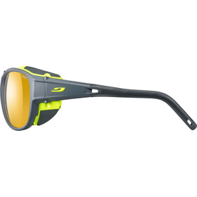 Julbo Exp*** 2.0 Zebra Sunglasses matt gray/green-yellow/brown